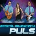 zespół muzyczny na wesela PULS Cover Band, dj na wesela